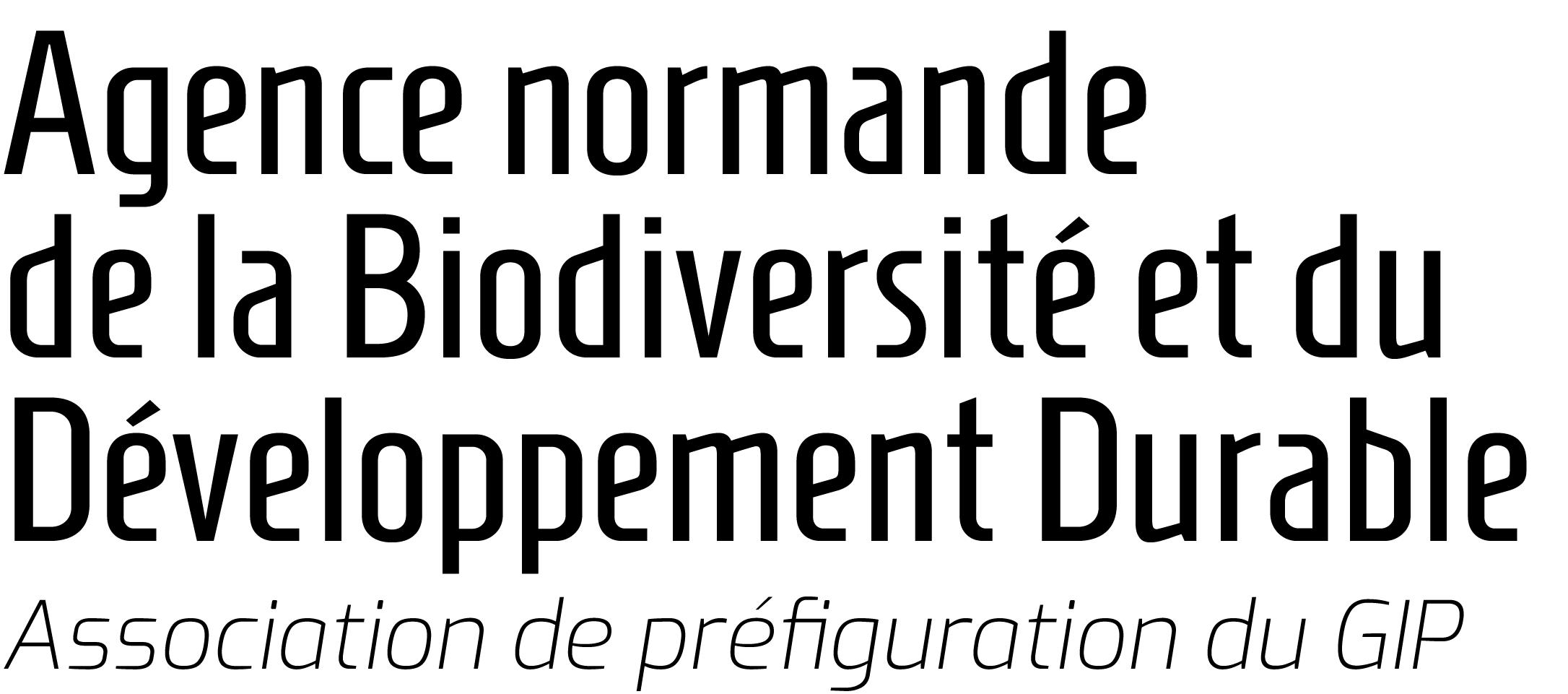 ASSOCIATION DE PREFIGURATION DU GIP